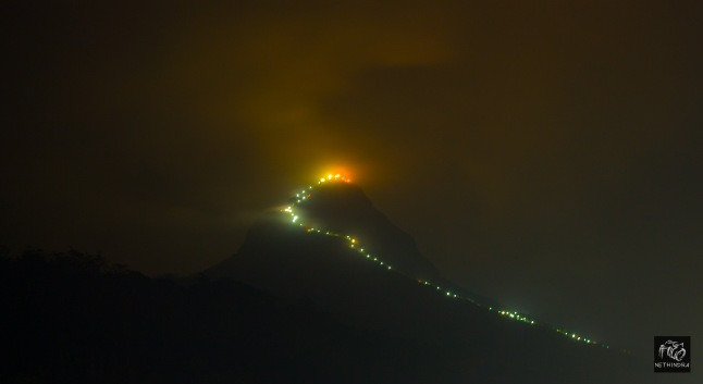 Illuminated path to Adam's Peak